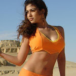 Very Hot Naval And Cleavage Showing Pictures Of Nayanthara